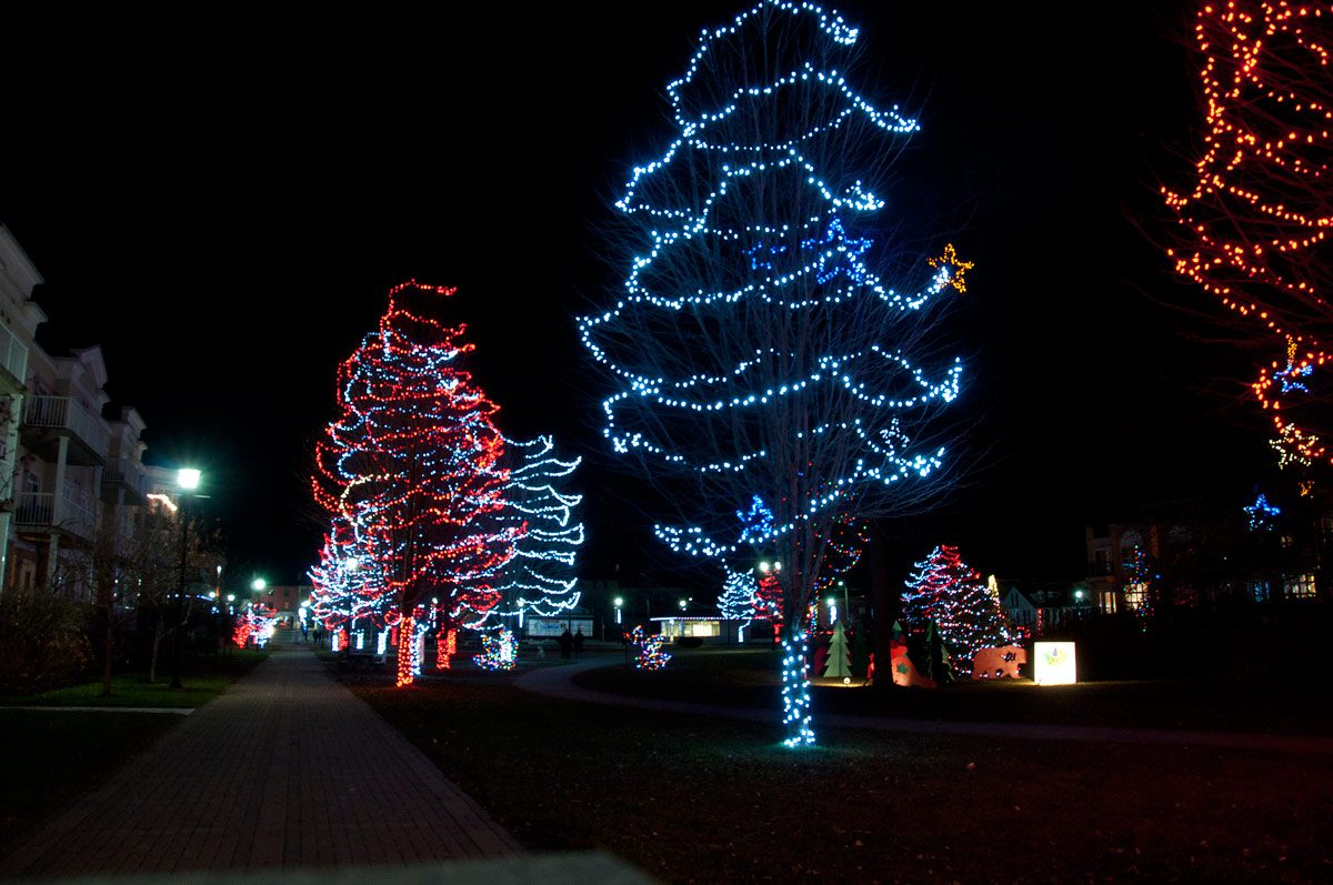 Christmas Lights in Rotary Park
