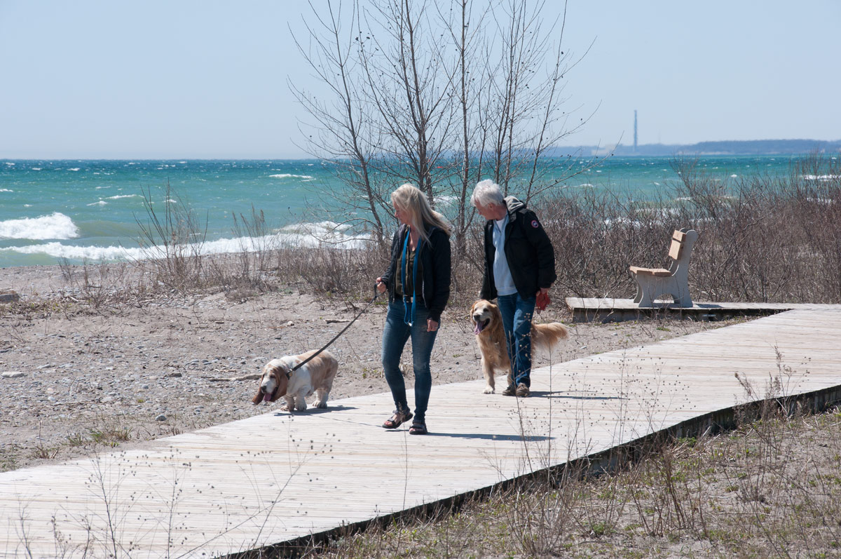 West Beach - one of the benches