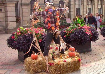 Harvey the Scarecrow