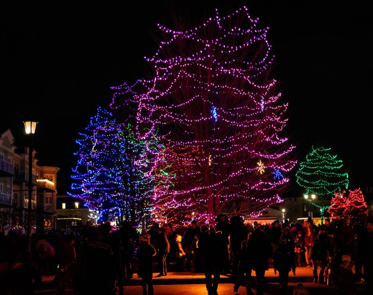 Christmas Lights in Rotary park - November 2018