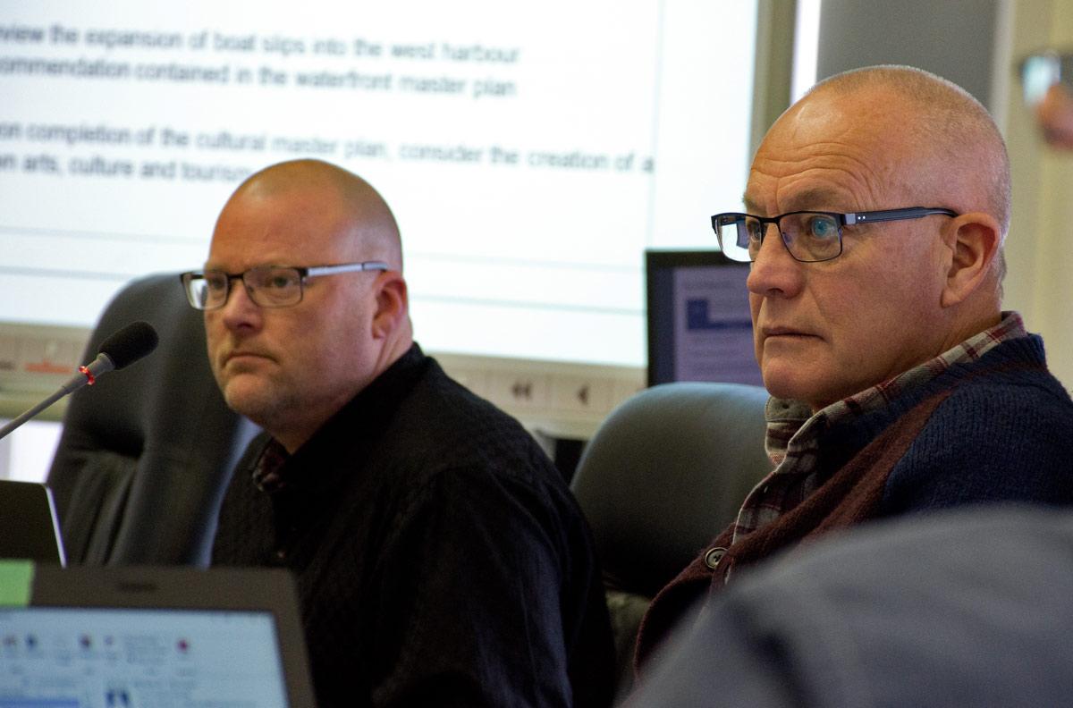 Council Strategic plan - Councillors Adam Bureau and Brian Darling