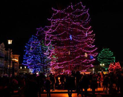 Rotary Park Lights 2018