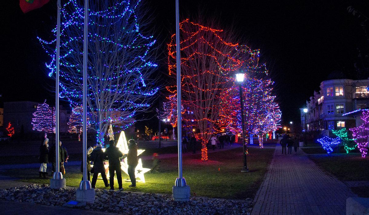 Rotary Park Lights