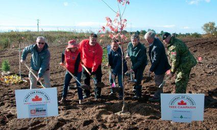 Tree Planting H.O.H.