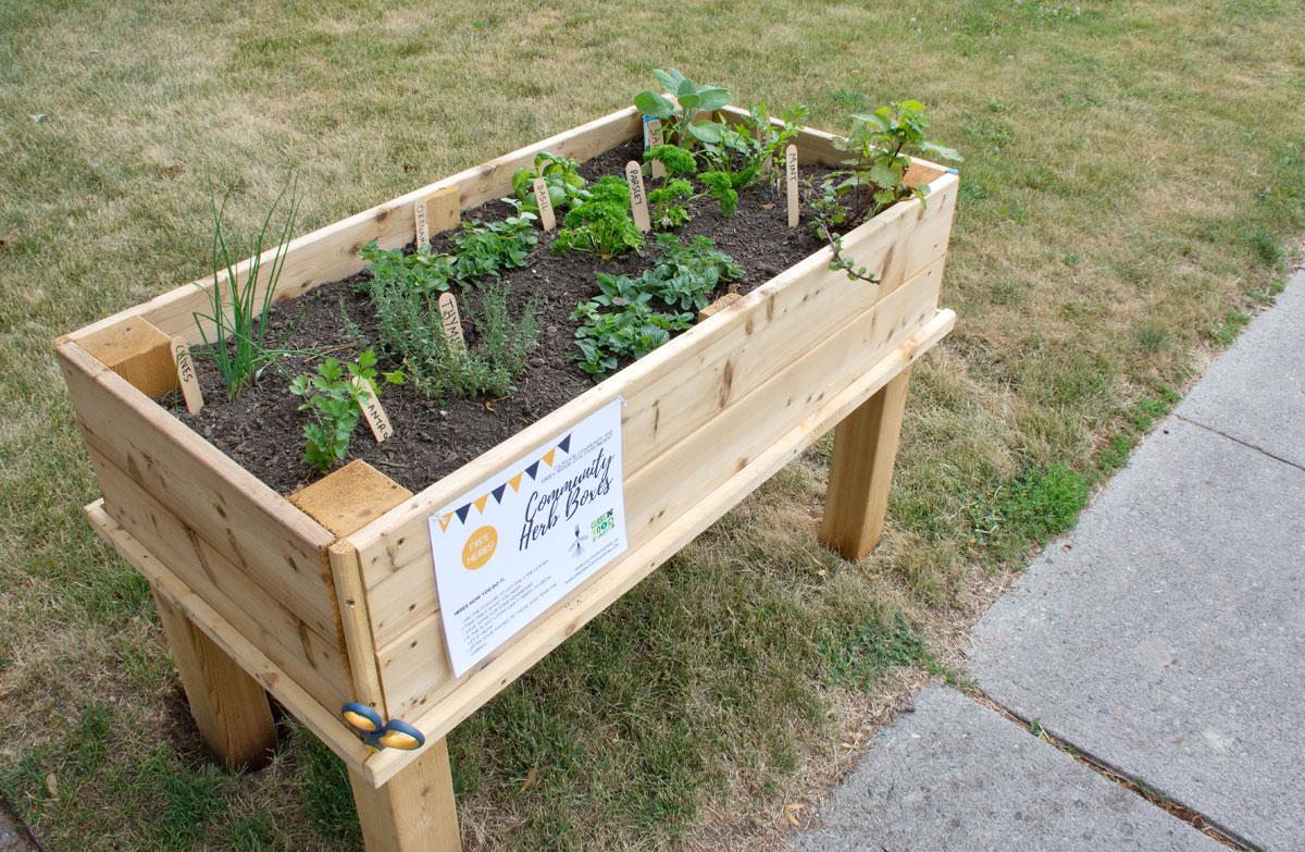 Pop up Herb Garden on Church St