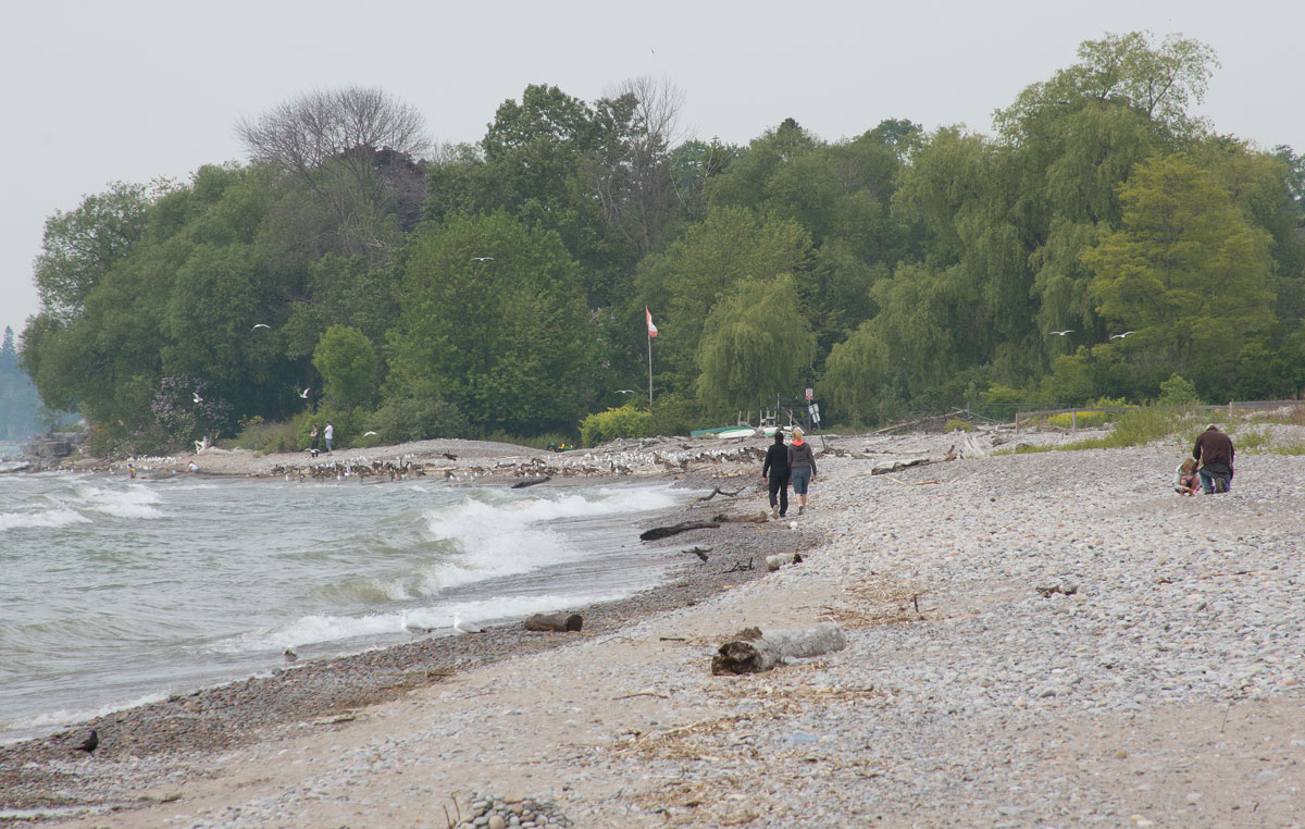 A few people are using the West Beach